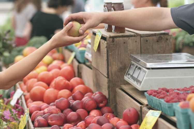 apple business fruit local